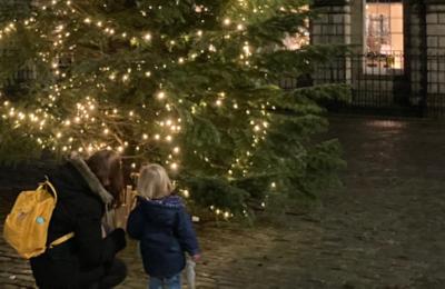 Royal Mile Christmas Tree Trail in Edinburgh